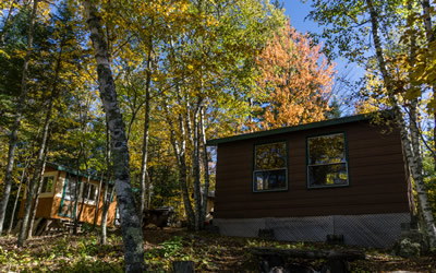 Scott Nielsen's cabin on the shoreline of Rainy Lake Ontario, a new long-term lab field base for future biodiversity and biogeography research (Photo: Scott Nielsen)