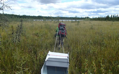 One of us wades through boreal forest fens pulling equipment and samples (Photo: Jacqueline Dennett)